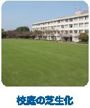 校庭の芝生化